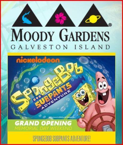 moodygardenscapture