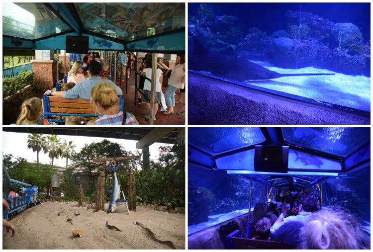 What can you do at Houston's Downtown Aquarium? Come see! #ad #AquariumHouston