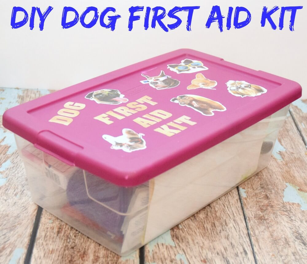 New Dog Amp Diy Dog First Aid Kit The Tiptoe Fairy