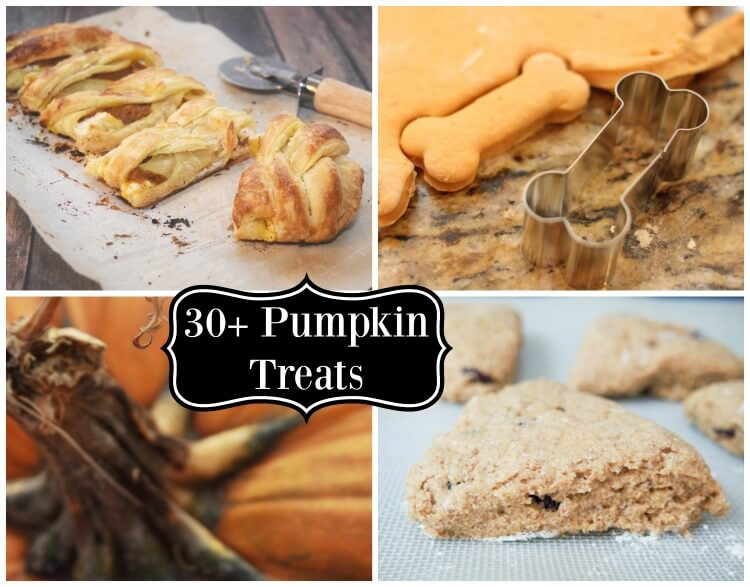 More than 30+ Pumpkin recipes, crafts, and more! #pumpkin #dessert #SoFabSeasons