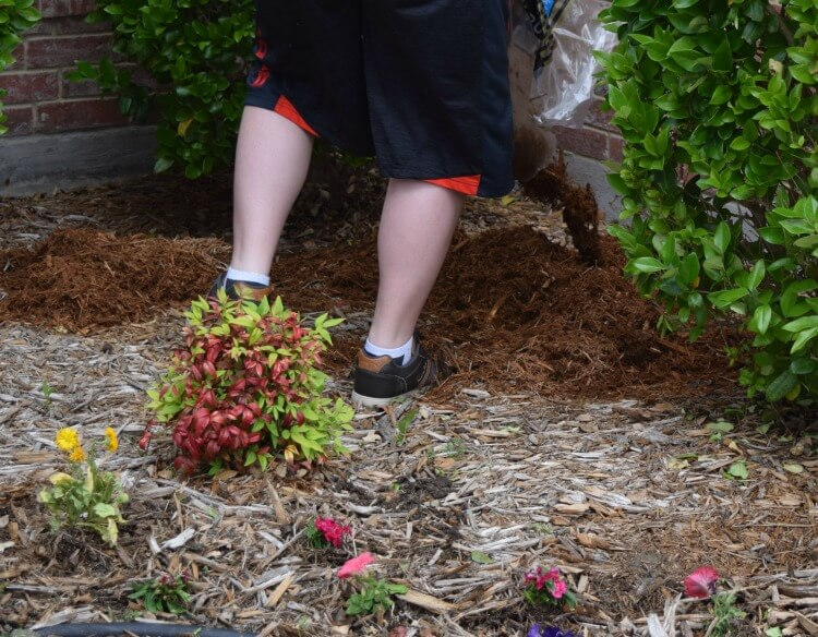 See how we're adding curb appeal & getting ready for spring! #drawtheline AD