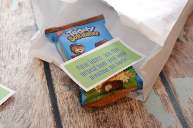 Free Printable Fun Facts for Kid Lunches #DiscoverTEDDY #ad