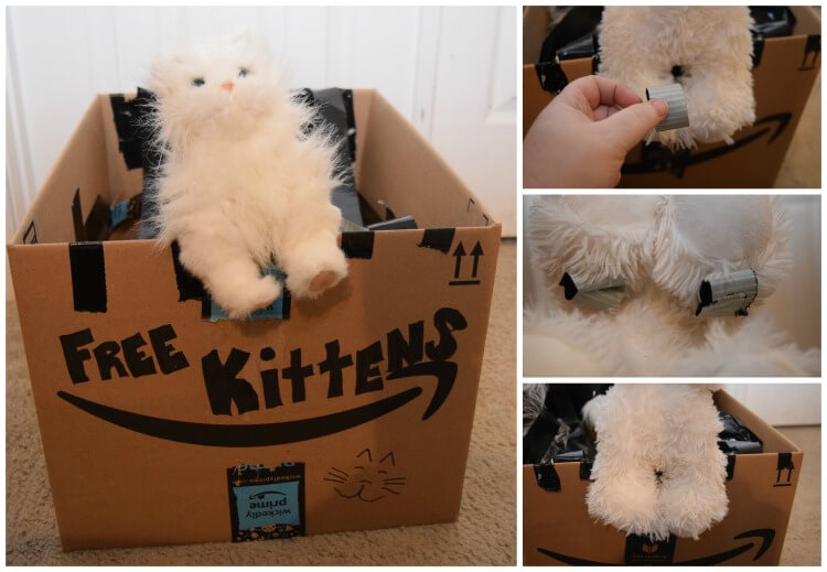 AD: Make a DIY Free Kittens boxtume with your little one as a kitten using @Amazon Smile boxes. #Boxtumes #AmazonPrime