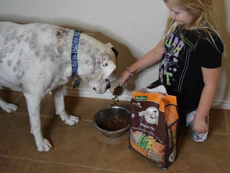 Feeding Hank Supreme Source® 10-Day Detox to improve his digestion.