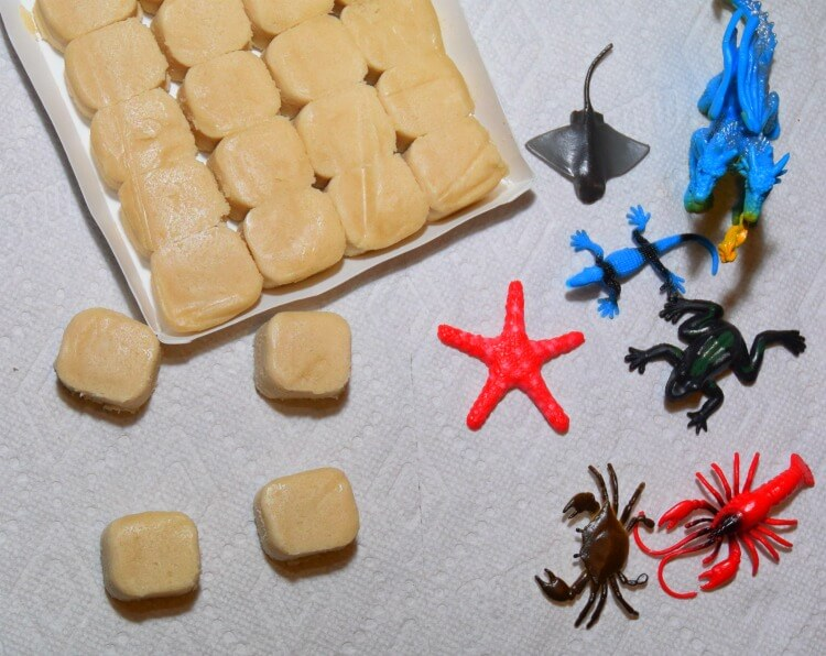 Cookie Fossils - how to make