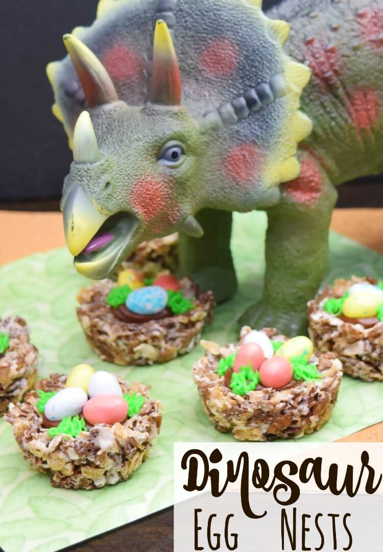 Dinosaur Egg Nests