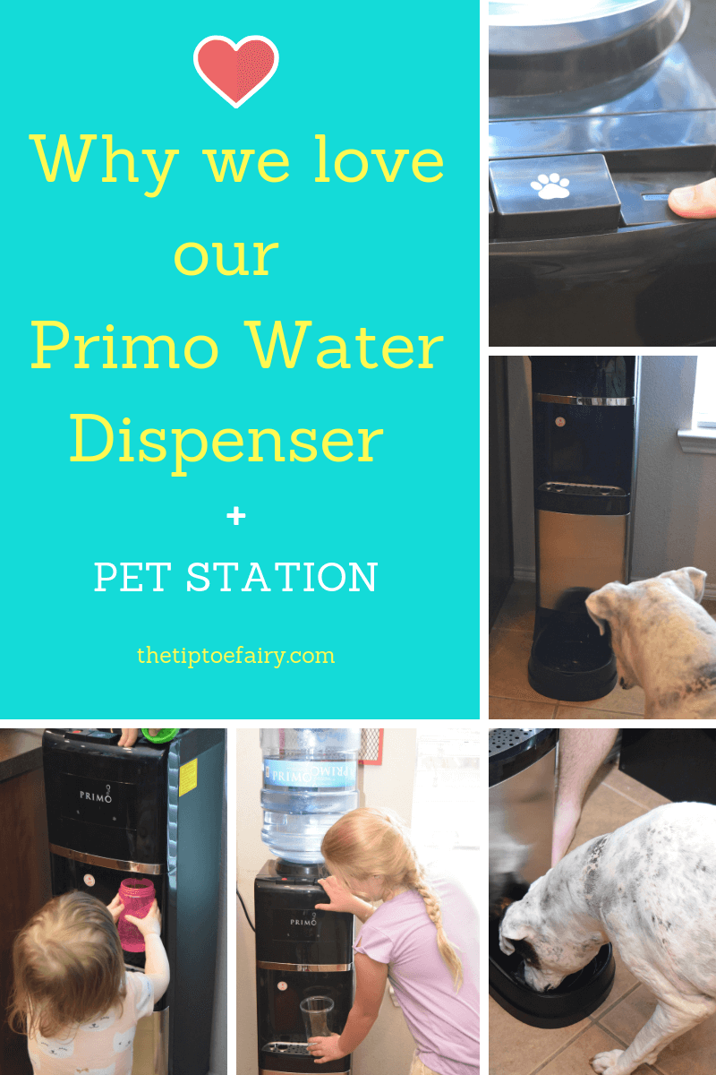 Title image for why we love our Primo Water Dispenser
